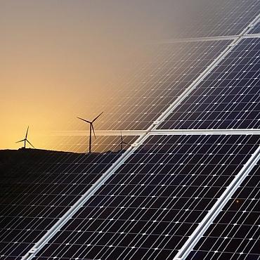 El Gobierno presentará, como mínimo, una subasta de renovables al año